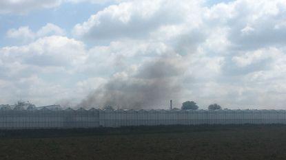 Afval en houten paletten vatten vuur in serre in Lendelede