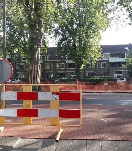 Hek en verkeersregelaar in Schilderstraat: 'Doelgroep zal het snel merken'