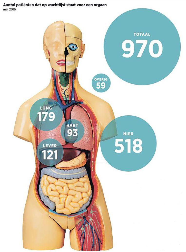 Aantal patiënten dat op de wachtlijst staat voor een donororgaan (mei 2016). Beeld Trouw / Transplantatiestichting