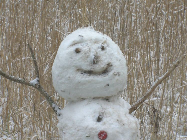 Sneeuwpoppen en sleeën in Den Haag
