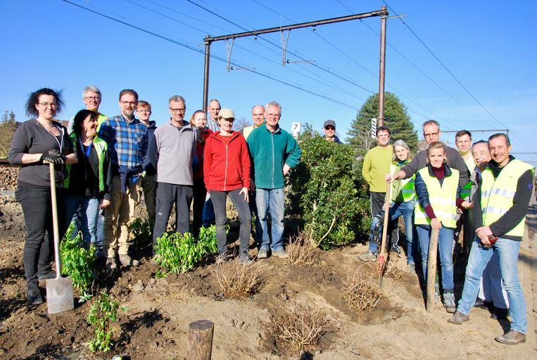 Het buurtcomité Zot Van H uit Heverlee bij enkele plantjes die ze net in de grond stopten langs de spoorwegberm.