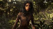 Het monopolie is voorbij: waarom 'Mowgli: Legend of the Jungle' zo belangrijk is voor Netflix