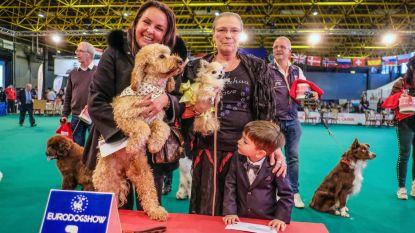 Marina, Nathalie en hun honden maken mooiste dogfie