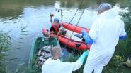 Brandweer haalt opnieuw honderden dode vissen uit fortgracht