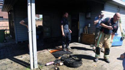 Minderjarigen proberen school en chirolokaal in brand te steken