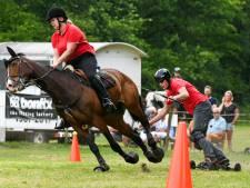 Snel, stoer en spectaculair : horseboarding in Hattem