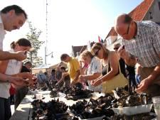 Wegwerpplastic op evenementen aan banden gelegd op Schouwen-Duiveland