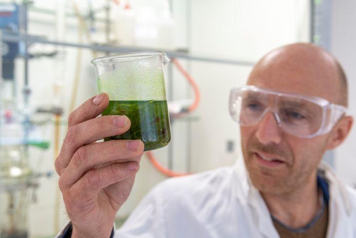 Marcel Ernes, interim directeur van de Green Chemistry Campus in Bergen op Zoom, in het laboratorium waar de reststroom van zeewier wordt onderzocht voor toepassing in duurzame verf.