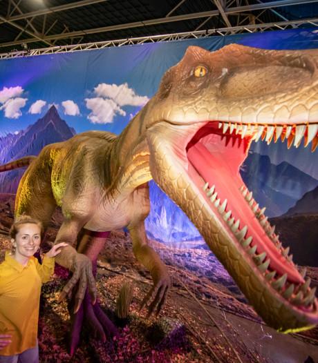 Van brachiosaurus tot omesasaurus: tientallen dino's in Utrecht