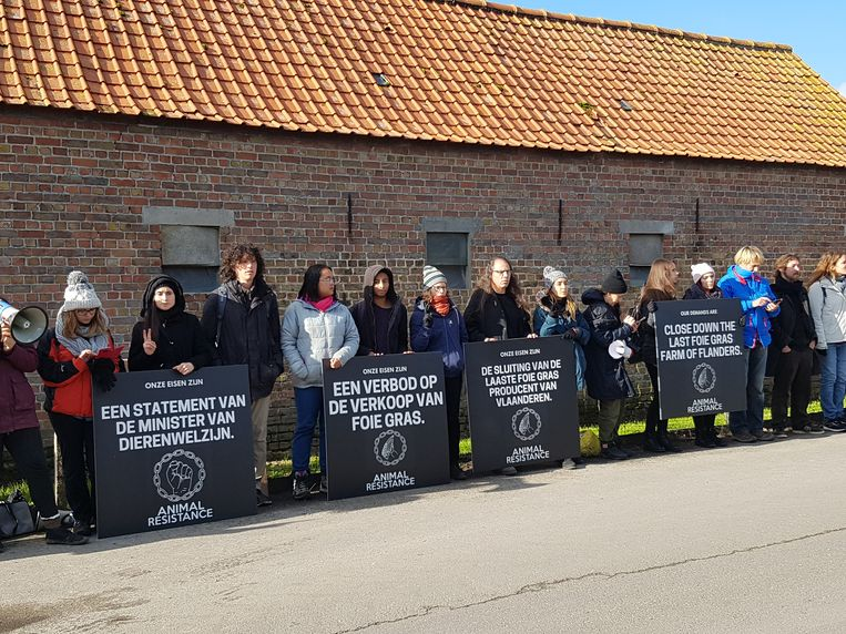 Dierenrechtenactivisten voor de eendenboerderij in de Doornhoekstraat in Bekegem