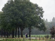 Rioolruzie Landgoed Hemmen: stukje wel, stukje nog niet aanleggen