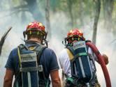 De brand in de Deurnsche Peel was heel heftig, maar het aantal natuurbranden valt deze zomer tot nu toe mee