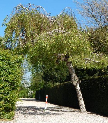 Gemeente ruimt graven in Oud-Beijerland, Mijnsheerenland en Puttershoek