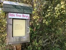 Papendrechtse boekenruilkast op slot vanwege vandalisme: 'Deze tieners willen niet lezen'