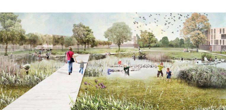 Een simulatiebeeld van hoe het park er op Hoekakker zou kunnen uitzien.