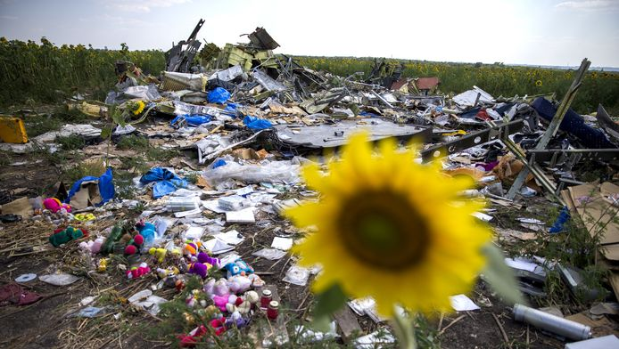 Wrakstukken van vlucht MH17 in het oosten van Oekraïne.