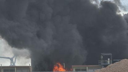 Brand bij Mouterij Albert zorgt voor enorme rookpluim