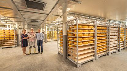 Vier medailles voor kaasboerderij 't Groendal op World Cheese Awards