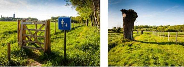 Zicht op de nieuwe wandel (-en fiets)verbindingen tussen het Disveld en de Vorte Bossen