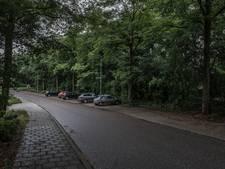 Waarom je je auto niet aan de Singel moet parkeren