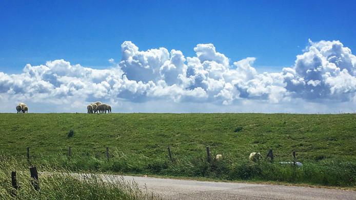Bijzondere wolken tijdens mijn duurloopje in de Zak van Zuid-Beveland
