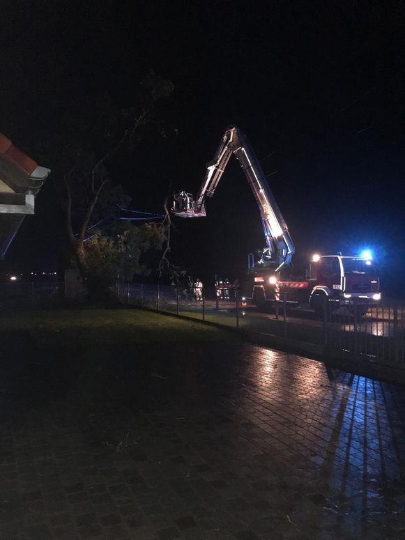 Een afgewaaide tak kwam op een elektriciteitsleiding terecht. De brandweer diende die te verwijderen.
