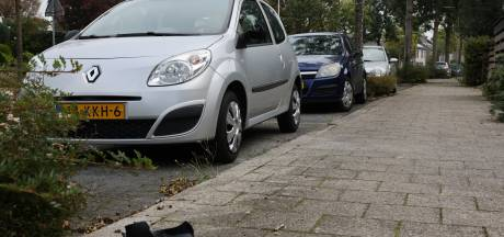 Politie Zwolle zoekt drietal na 'spoor van vernielingen': 'Blijf van andermans spullen af, ook al verveel je je'