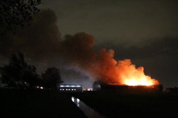 Grote brand in melkveehouderij in Maasland