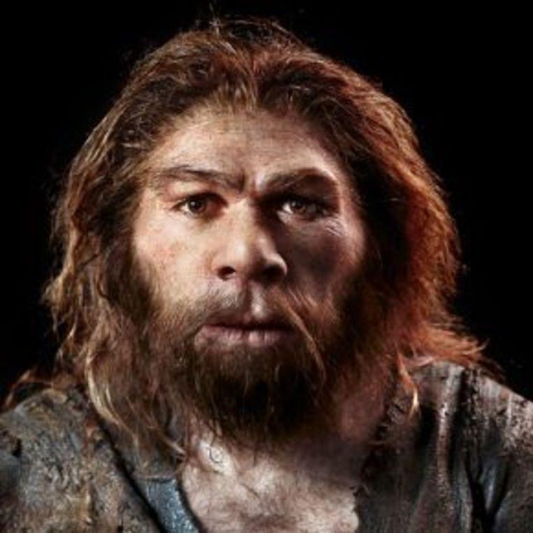 Een beeld van hoe de Neanderthaler er in de Oude Steentijd in onze regio mogelijk heeft uitgezien.