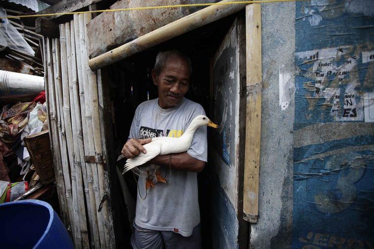 Een inwoner van Tacloban met zijn eend die de storm heeft overleefd. Beeld ap