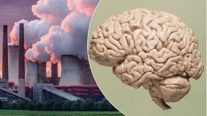 Van ontkenning tot uitstelgedrag: wat het klimaatprobleem doet met ons brein