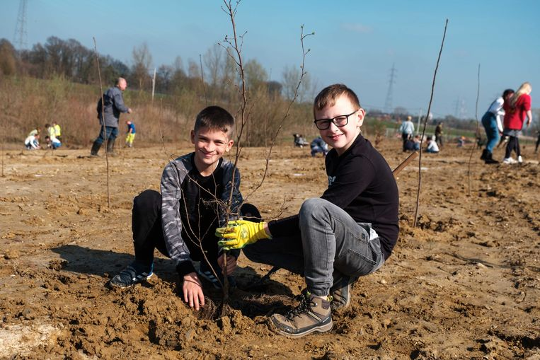 De kinderen planten bomen.