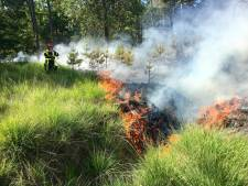 Brandweer rukt uit voorzorg groot uit bij natuurbranden, ook in Alphen