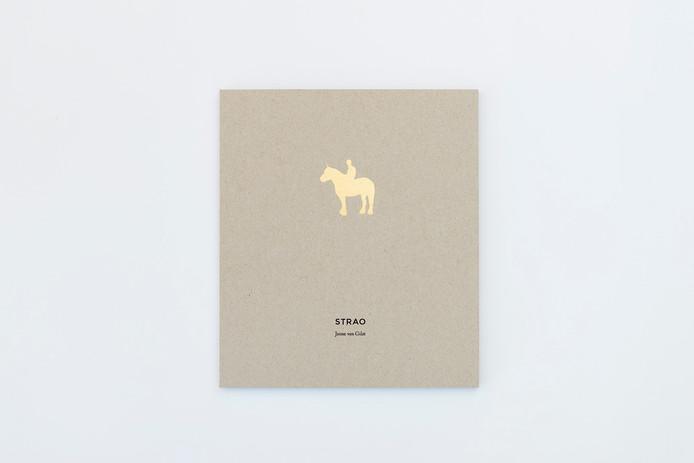 Cover van 'Strao' van Janne van Gilst