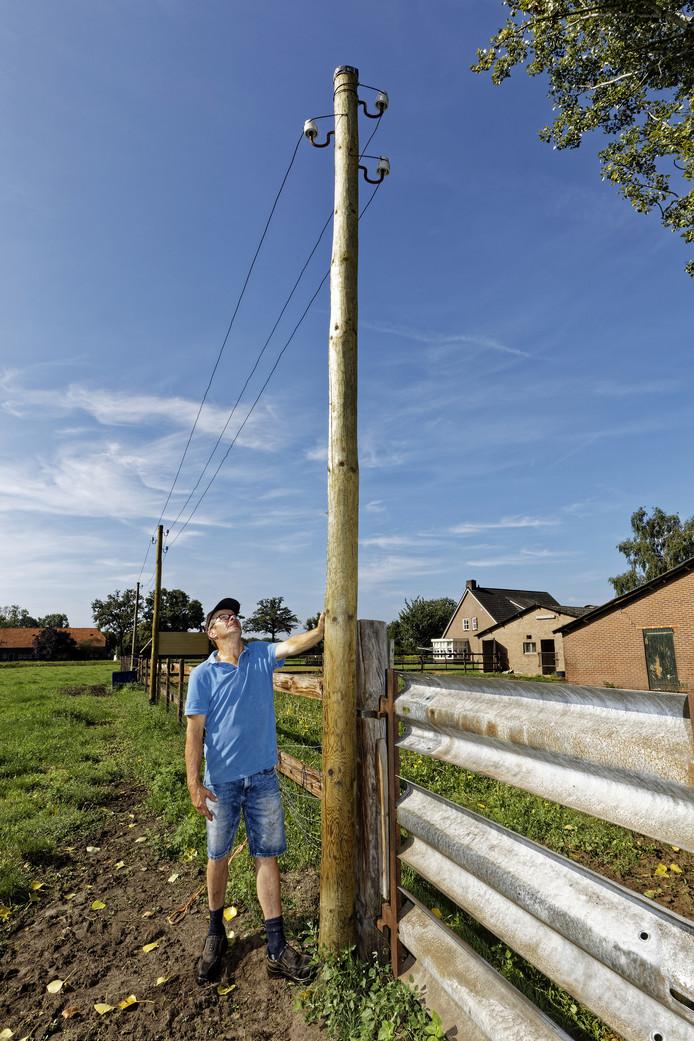 Jos Welte uit Wijbosch bij een van de palen waar lijnen tussen gespannen zijn voor boerenzwaluwen en huismussen.