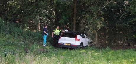 Auto raakt bij Ermelo van talud en rijdt de bosjes in: één gewonde