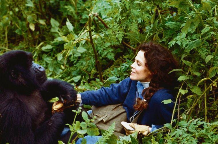Sigourney Weaver in Gorillas in the Mist. Beeld