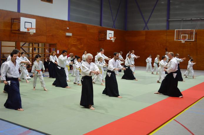 Aikido Rotterdam Tenchigowa is dé sportclub van Zuid-Holland. De vereniging in zelfverdedigingskunst maakt nu kans op de eretitel Club van het Jaar van Nederland.