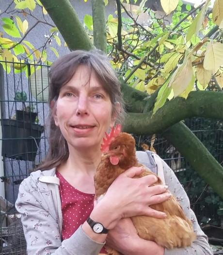 Geen straf voor Sandra die Jip de kip stal uit kunstproject