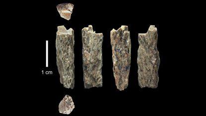 Neanderthaler-kind werd (deels) opgegeten door groot vogelachtig wezen