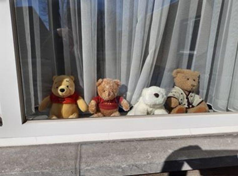 In Dendermonde zitten de beren al klaar.