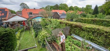 Huiselijk geweld steeds vaker reden  voor spoedaanvraag woning op de Veluwe