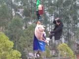 Les images choquantes d'un cochon forcé à sauter à l'élastique