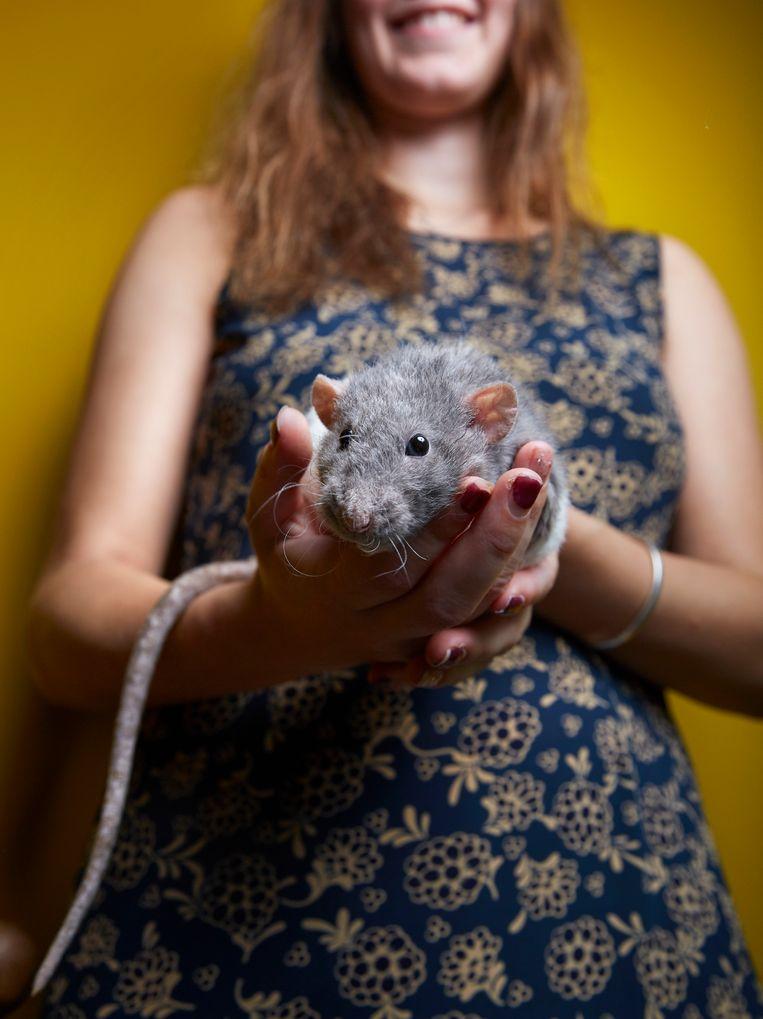 Caligula (1,5), Bruine rat, Spaarndammerbuurt. Beeld Isabella Rozendaal