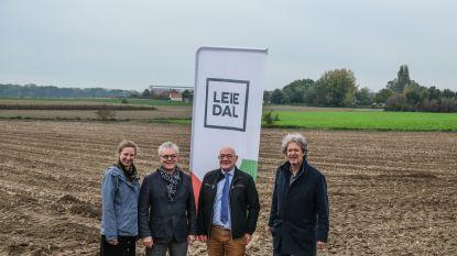 Leiedal kiest voor 'open ruimte' in plaats van woonproject: nieuw bos in Sint-Denijs?