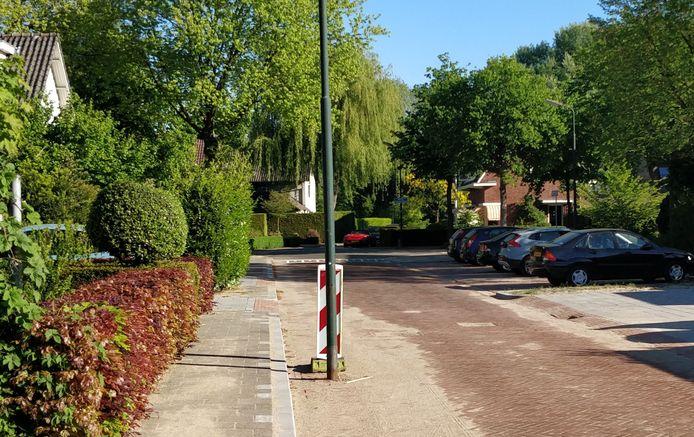 Lantaarnpaal óp de weg: curiosum in de Dokter Schräderlaan te Oisterwijk.