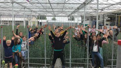 Leerlingen VBS maken kennis met anjerteelt bij Anjers De Nijs