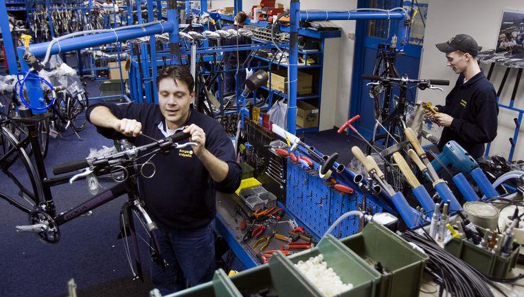 De fabriek van Koga-Miyata in Heerenveen. Koga is een van de fietsmerken van Accell. Het bedrijf denkt de diefstal van 4 miljoen euro door een werknemer zonder schade te kunnen compenseren Beeld anp