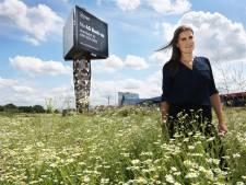 Dit Utrechtse bijenhotel trekt straks meer bezoekers dan reguliere hotels: 'Alles waar een bij van houdt'