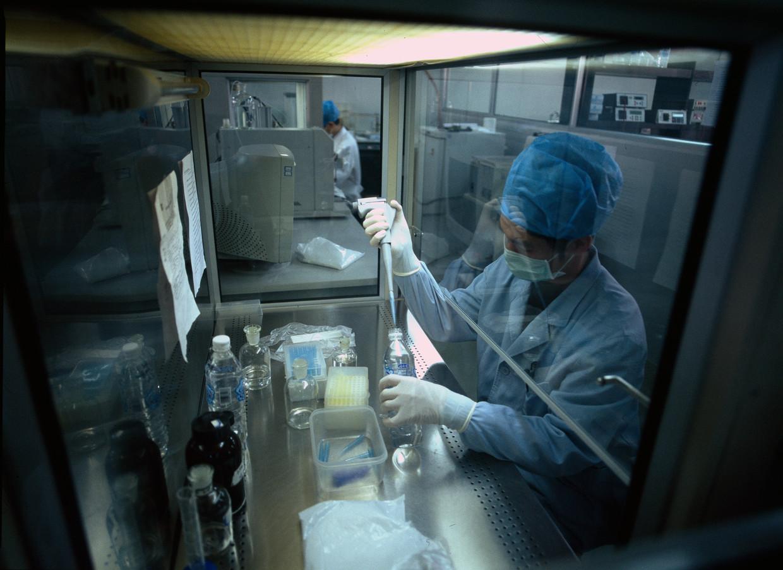 Onderzoekers aan het werk bij BGI in Beijing, een van de grootste biotechbedrijven ter wereld. Beeld Getty
